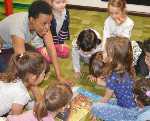 limbi-straine, conceptul educational questfield