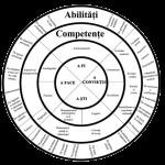 schema-cercuri